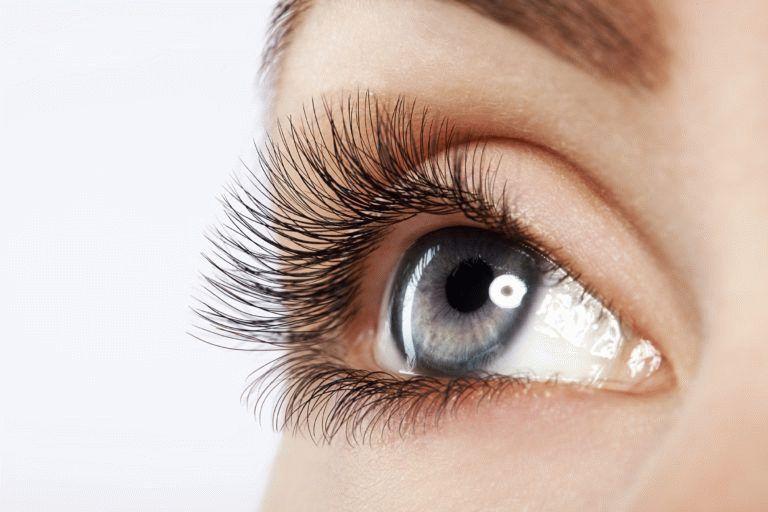 Kissimmee Orlando Premium Eyelash Extensions, Nova Lash ...